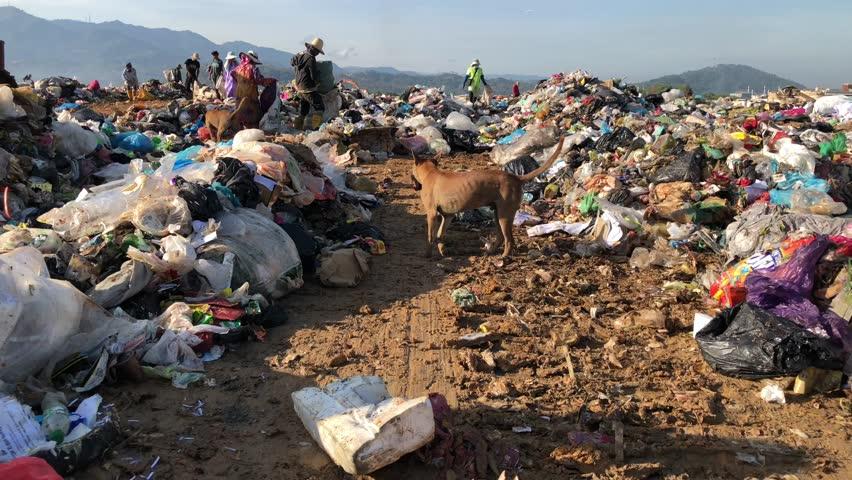 KOTA KINABALU, MALAYSIA - 13 APRIL, 2019: The view of landfill site at Kayu Madang, Kota Kinabalu, Sabah.Malaysia. | Shutterstock HD Video #1027533356