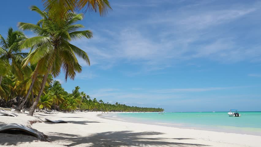 Amazing white sand Isle palms beach turquoise sea water background. Caribbean white sand beaches. Palms on wild white sand beach. Nature summer vacation Dominican Republic. White sand and azure sea | Shutterstock HD Video #1027533506
