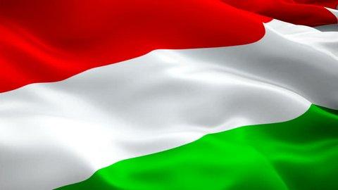 Hungary flag video waving in wind. Realistic Hungarian Flag background. Budapest Hungary Flag Looping Closeup 1080p Full HD 1920X1080 footage. Hungary EU European country flags/ Hungary Hungarian Flag