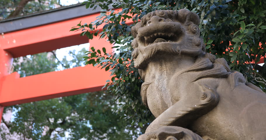 Statue guardian dog at the traditional shrine. Shinjuku district Tokyo Japan - 01.21.2019 : It is an old statue at the traditional shrine. camera : Canon EOS 5D mark4 | Shutterstock HD Video #1028153306