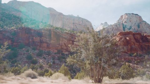 view from bus in zion national park