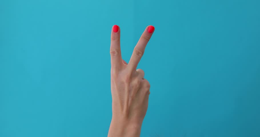 Closeup of isolated on blue adult female hand counting from 0 to 5. Woman shows fist fist, then one, two, three, four, five fingers. Manicured nails painted with beautiful polish | Shutterstock HD Video #1029016856