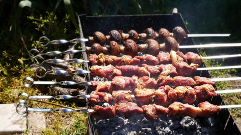 Meat and mushrooms are fried on coals.Preparing tasty meat barbeque on skewers. This is a shish-kebab. Shish-kebab - a popular dish of Caucasian, Turkish and Asian cuisine.