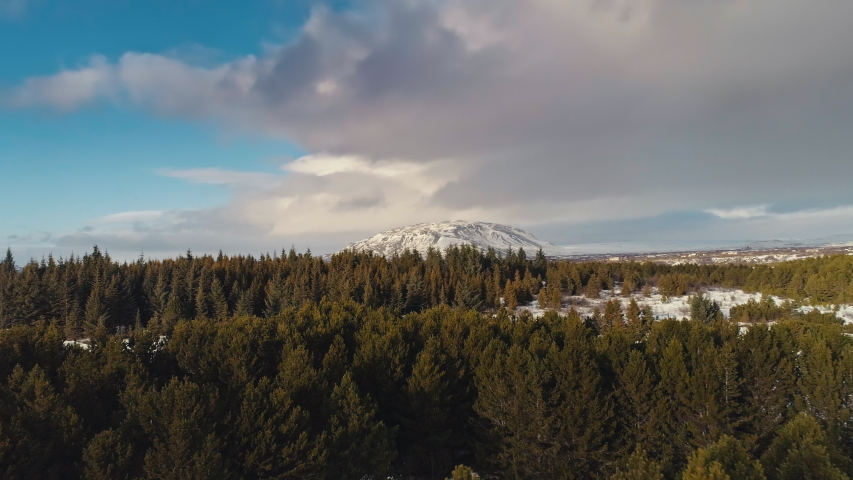 A snow covered mountain being lit by the sun is being revealed through a field of pine trees during winter time in Iceland. Aerial drone shot | Shutterstock HD Video #1029768686