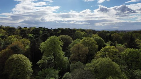 City of Glasgow, Scotland revealed from air behind woodland forest in park on sunny day