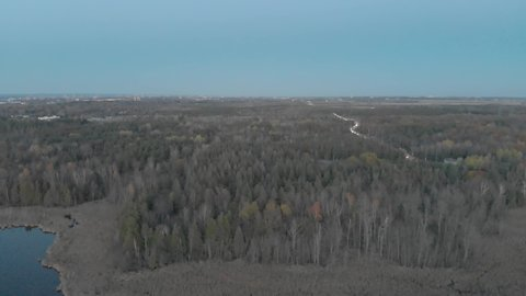 Flying over a dim forest in the late fall near ottawa, ontario with cars on the highway and a blue city skyline in the distance.