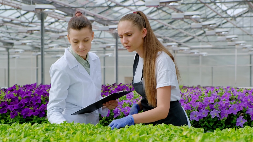 Two women in white coats and black aprons. Scientists, biologists or agronomists examine and analyze flowers and green plants in the greenhouse. Write data to the tablet. Selection and care of plants. | Shutterstock HD Video #1030055366