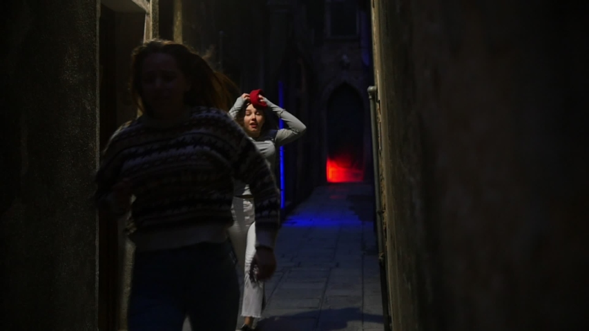 Silhouettes of running women in scary dark neon corridor. A light turning on then they runs out of the corridor | Shutterstock HD Video #1030382036