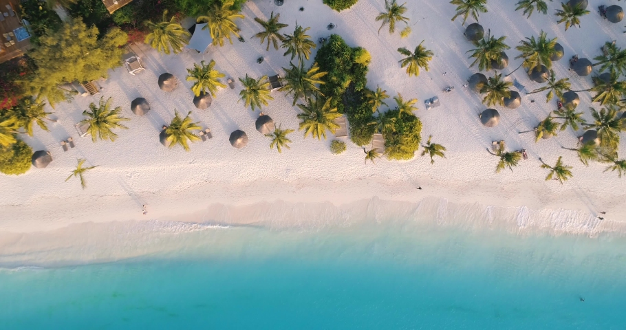 Aerial view of sea waves, umbrellas, green palms on the sandy beach at sunset. Summer in Zanzibar, Africa. Tropical landscape with palm trees, people, parasols, sand, blue water. Top view from air   Shutterstock HD Video #1030914146