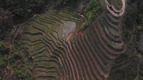 Drone shot of Terrace Rice Fields in Vietnam