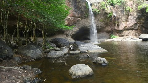 streaming waterfall in tropical jungle rainforest. This waterfall in thai national park in deep forest on mountain. Around of brook has green jungle from big tree.Forest protected by forester.
