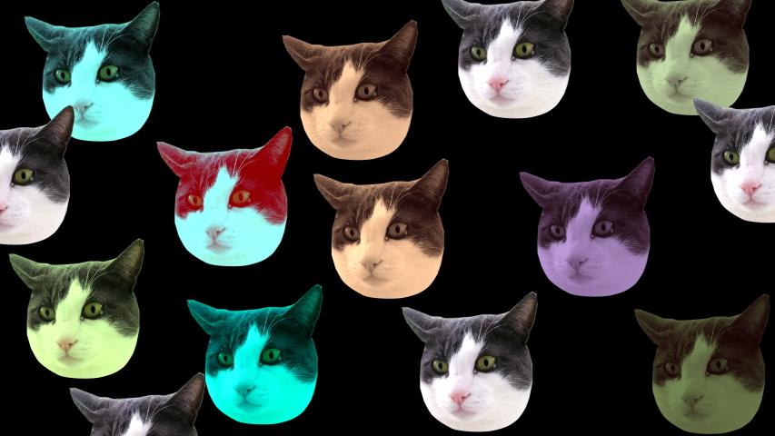 Two-tone Minimal animation Motion design Fun Art. Kitty glamour style on black background. 4k | Shutterstock HD Video #1031695376