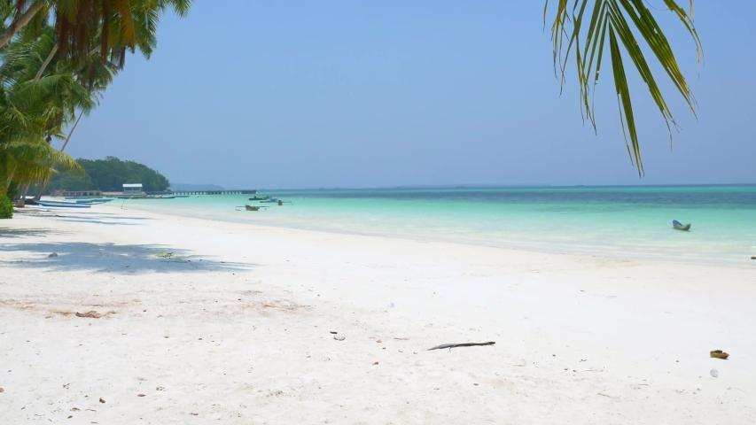 White sand beach caribbean sea turquoise water sunny tropical coastline palm fronds idyllic nobody, Pasir Panjang Kei Islands Indonesia Moluccas Maluku Indonesia | Shutterstock HD Video #1031971856