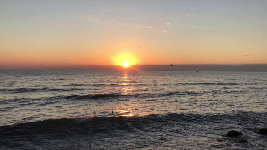 Beautiful sunrise with flying birds. Orange and gold blue sky. Gold sea. Sound of waves the sea on the beach on sunrise. Sunset. Sunset with sea a view. Yellow sun coming out of the sea. Orange sunset | Shutterstock HD Video #1033493516