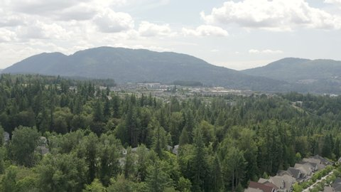 Homes and Businesses Amongst Trees in Issaquah Highlands Washington USA - Aerial View