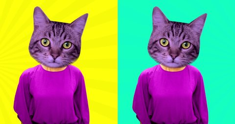 Contemporary animation cartoon art. Dancing girl with cat head. Fashion colorful vibes. Minimal motion art. Dancing funny cats.