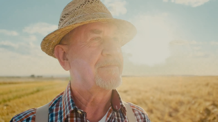 Close up of the senior Caucasian good looking wise man farmer in a hat looking at the side, turning face to the camera and smiling in the wheat field. Portrait.