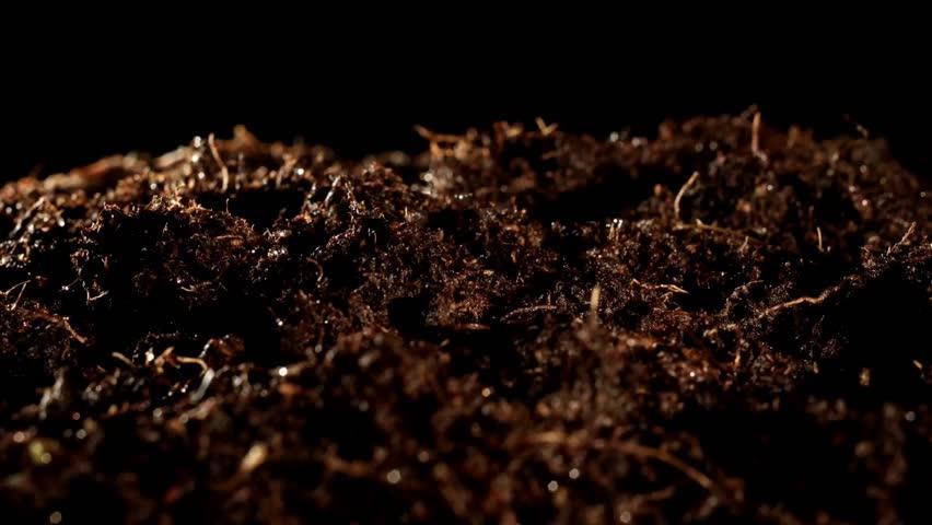 Header of soil