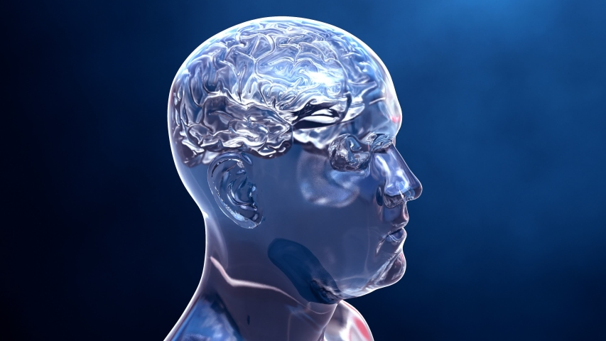 Journey into the brain that passes through the neurons cells that transmit information or memories   Shutterstock HD Video #1035904706
