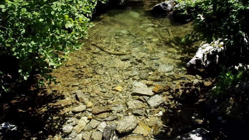Water mirror in a mountain stream   Shutterstock HD Video #1036049726