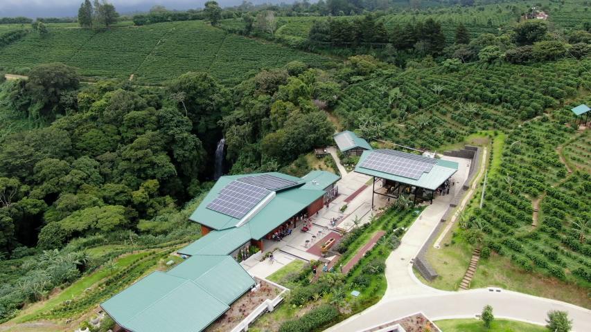 San Jose / Costa Rica - 06 30 2019: Starbucks Hacienda Alsacia coffee tree plantation near San Jose, Costa Rica