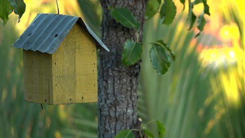 yellow birdhouse with tin roof on tree