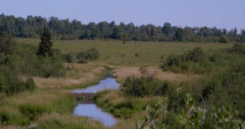 Amos, Québec/Canada 08-24-2019: Natural wetland in Abitibi.