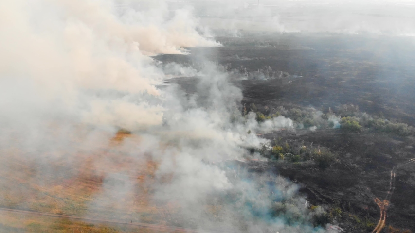 Air pollution caused by wildfires, clouds of smoke above the burning field, aerial footage. Epic natural disaster, forest fire in summer 2019. | Shutterstock HD Video #1038817106