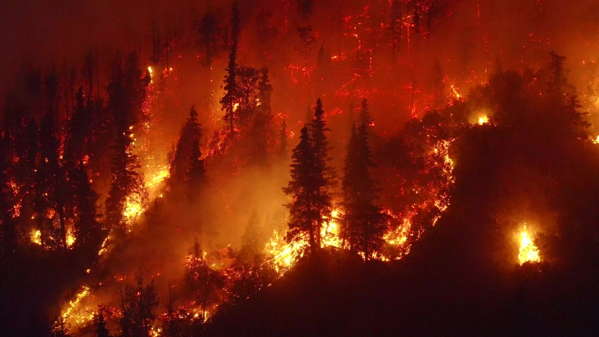 Aerial, tilt down, drone shot, overlooking trees in flames, Alaskan forest fires destroying and causing air pollution, on a dark, summer night, in Alaska, USA #1038964586