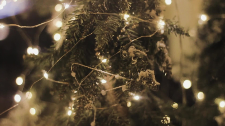 Christmas tree decorations lights on a gift shop window | Shutterstock HD Video #1041008366