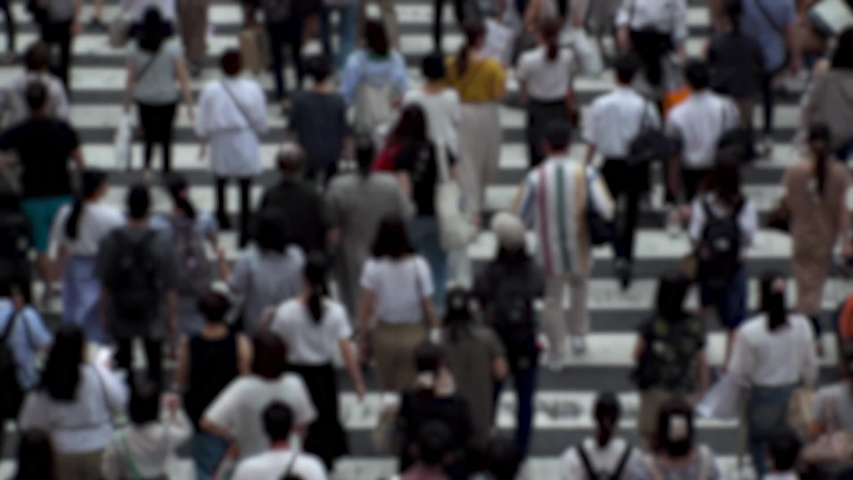 UMEDA, OSAKA, JAPAN - CIRCA SEPTEMBER 2019 : Aerial blurred high angle view of zebra crossing near Osaka train station. Crowd of people at the street. Shot in busy rush hour. Wide slow motion. | Shutterstock HD Video #1041098746