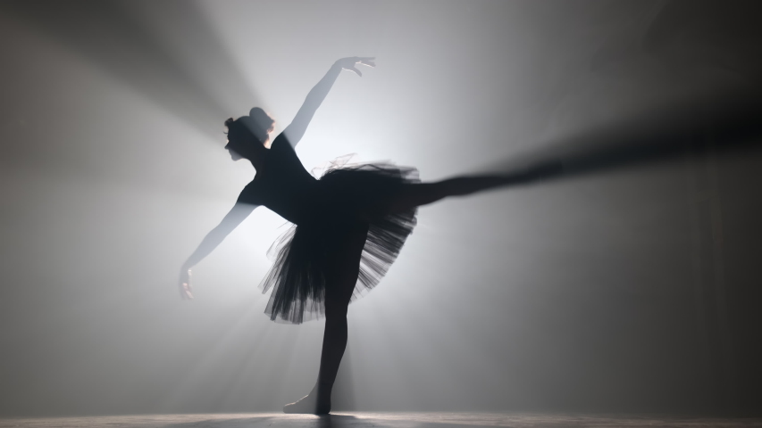 Professional ballerina dancing ballet in spotlights smoke on big stage. Beautiful young girl wearing black tutu dress on floodlights background. Black and white. 4k   Shutterstock HD Video #1041692866