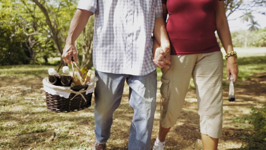 Old people, senior couple, elderly man and woman, husband and wife in park, active retired seniors. Outdoor activities. Grandfather and grandmother holding hands and basket with food. Steadicam shot | Shutterstock HD Video #1042616866