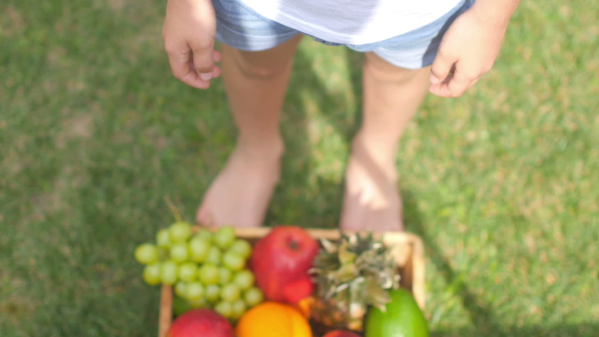 The girl picks up and holds in her hands boxes with ripe fruits. A variety of fruits in the garden. Delicious healthy food. | Shutterstock HD Video #1045011886