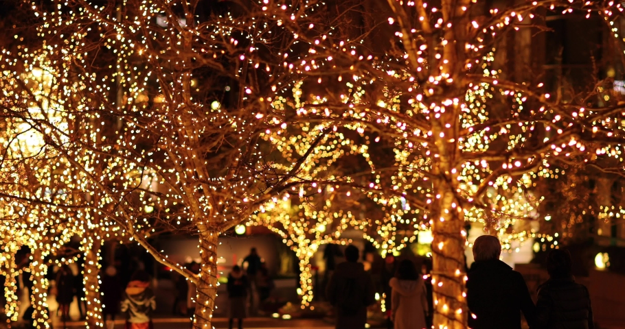 Footage of Christmas illuminations downtown Tokyo | Shutterstock HD Video #1045143916