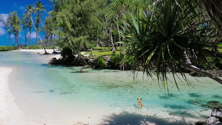 Eton Beach, Efate Island, Vanuatu, near Port Vila - famous beach on the east coast | Shutterstock HD Video #1045434676
