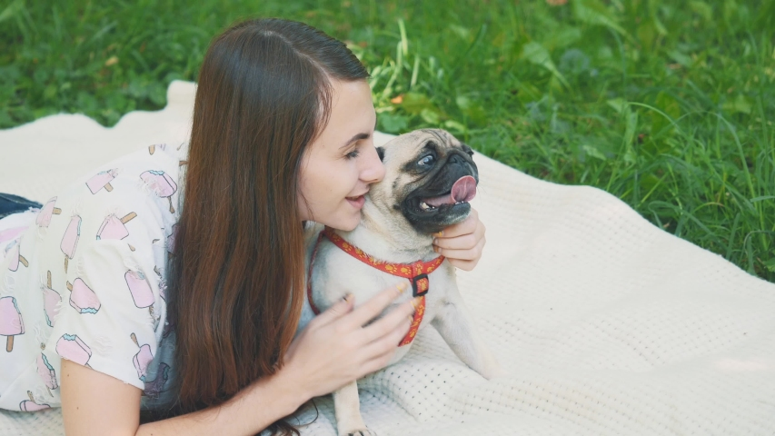 Smiling lady is taking free time with her dog. Woman relaxing in the nature with her little pug dog. Crop. Close up. Copy space. 4K. | Shutterstock HD Video #1046770996
