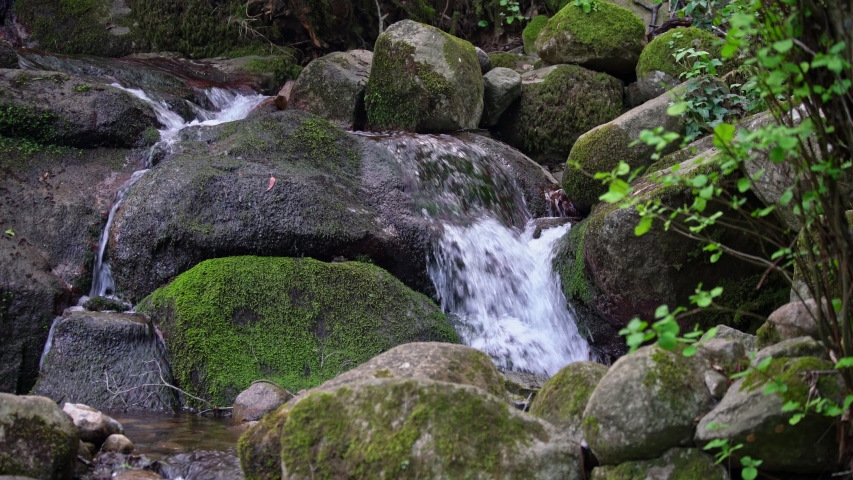 Mountain stream of clean and clear water flows in the mountains. Ecology and water supply of the earth. Monchique Portugal | Shutterstock HD Video #1049670526