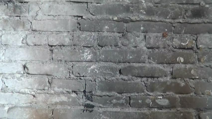 Plaster Wall Construction : Applying plaster to a brick wall construction worker