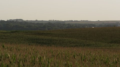 Slow motion static view of corn fields in Wahoo, Nebraska.