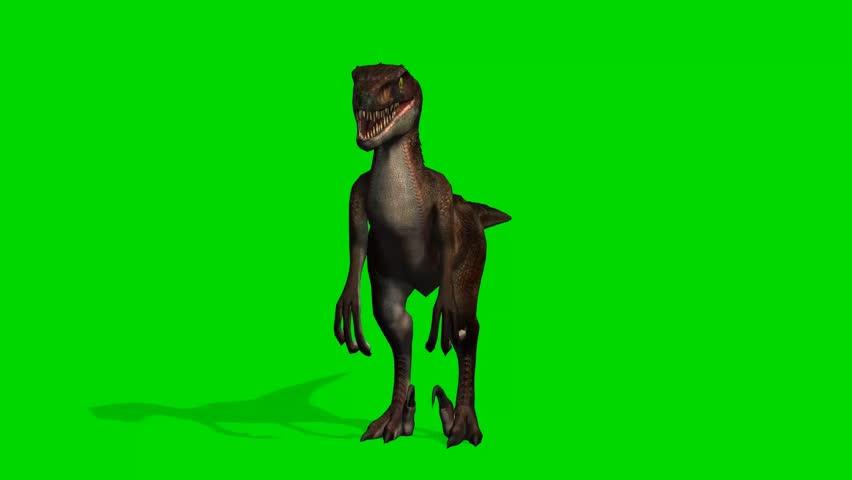 Velocirapor Dinosaurs roars - green screen