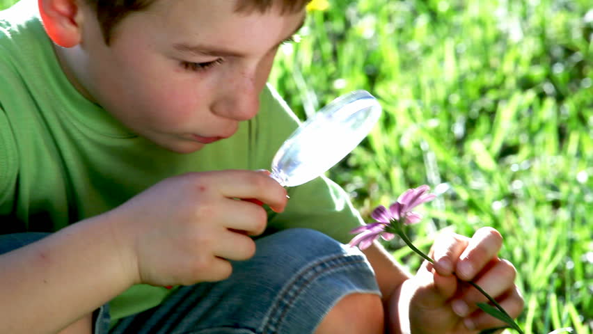 Little boy exploring nature with magnifying glass; Full HD, Photo JPEG