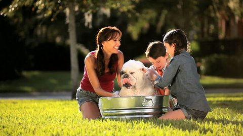 Mother & daughter bathing the family bulldog in metal bath in their garden