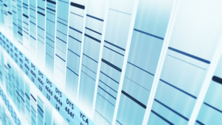 DNA Sequence. Lateral view. White-Cyan. 2 videos in 1 file. Lateral view of DNA sequences. Loopable. More options in my portfolio. | Shutterstock HD Video #11744597
