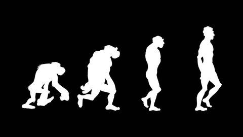 Human evolution morph. Loopable. Alpha matte. Frame to frame hand made animation. From the ape to the homo-sapiens. 4 stages. More options in my portfolio.