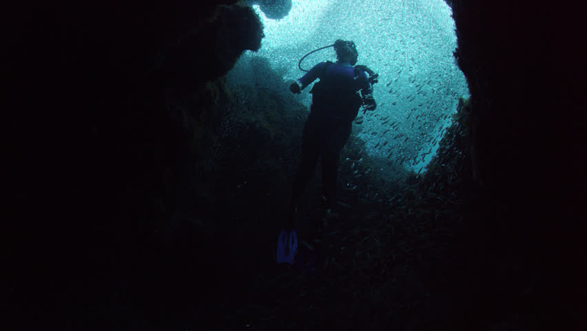 MS LA Diver swimming amongst school of fish and corals / Bahamas, 06/15/2014