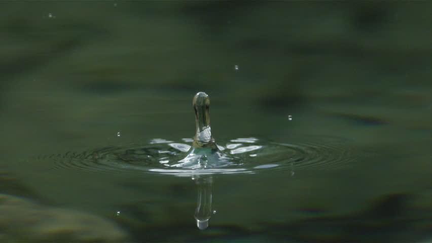 Slow Motion Macro Water Drop Stock Footage Video 100 Royalty Free 12031886