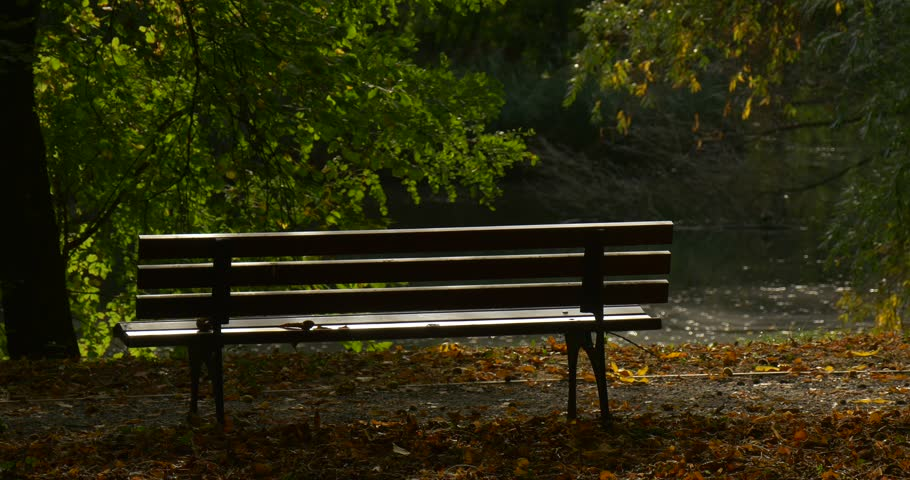 Empty Bench At The Park Stock Footage Video 100 Royalty Free