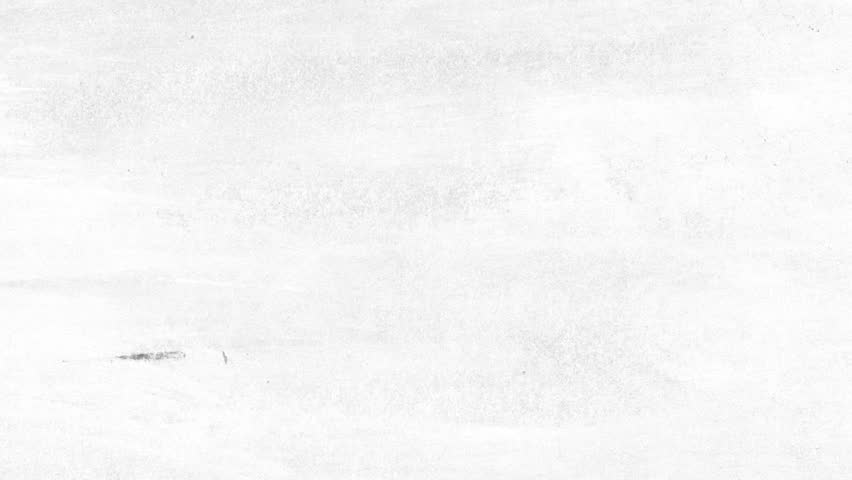 Paper white texture grunge | Shutterstock HD Video #12162296