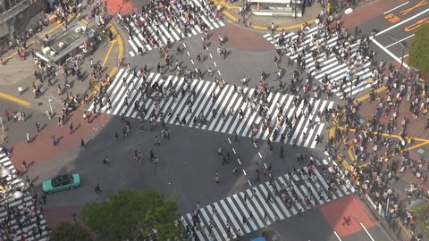 Aerial view of pedestrian people cross busy Shibuya crossing road in Tokyo by day